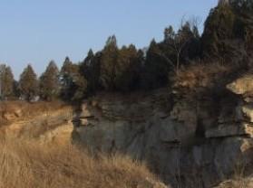 舜耕山国家森林公园