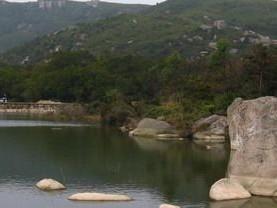 大鹤海滨森林公园