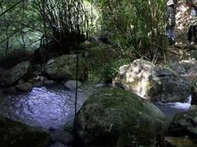 永春牛姆生态旅游区
