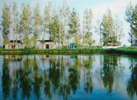 双泉湖垂钓园