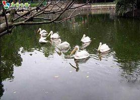 墩子自然保护区