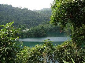 蝴蝶谷原始雨林