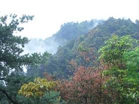 石佛国家森林公园