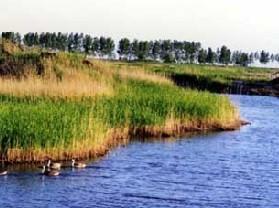 向海湿地保护区