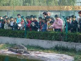 奥金鳄鱼乐园