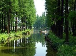 水上森林公园