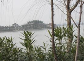 蠡湖大桥公园