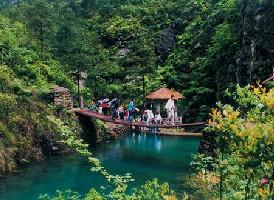 桐庐·大奇山国家森林公园