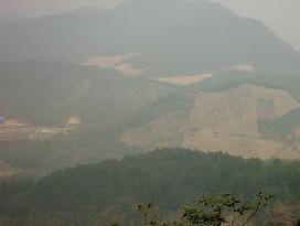灵峰山森林公园