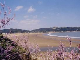 桃花岛·桃花寨景区