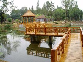 巢湖汤池温泉