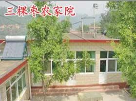 三棵枣农家院