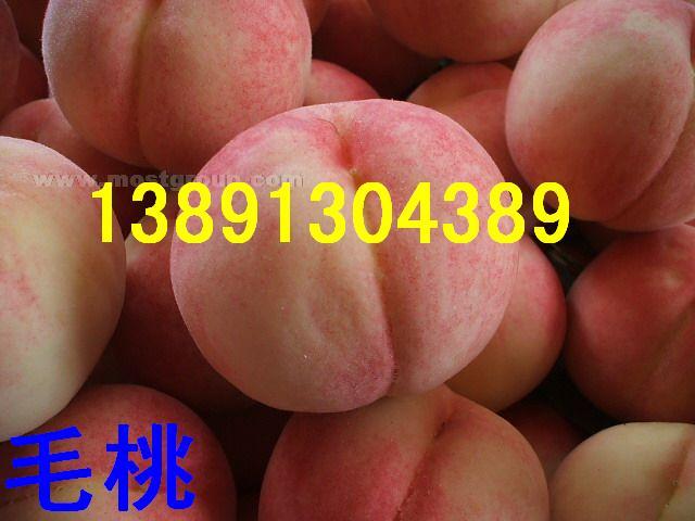 陕西毛桃沙红桃秦王桃富岛桃王超越一号200-1桃