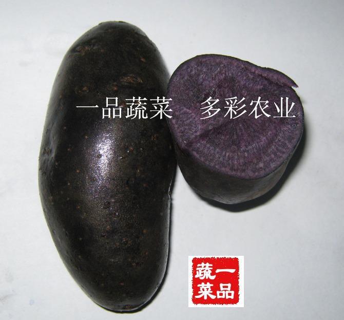 莱阳黑土豆