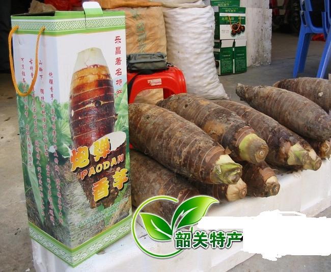 韶关乐昌著名特产张溪香芋炮弹芋头