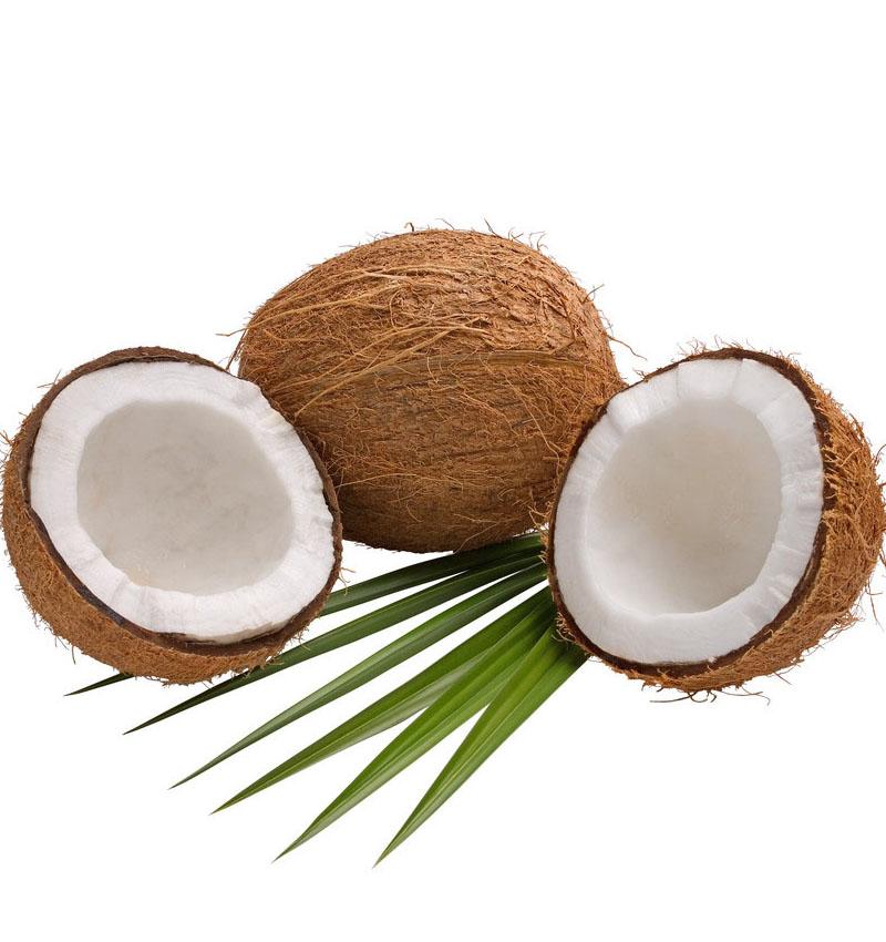 毛椰子去皮椰子.海南老椰子.鲜榨椰子汁专用原料