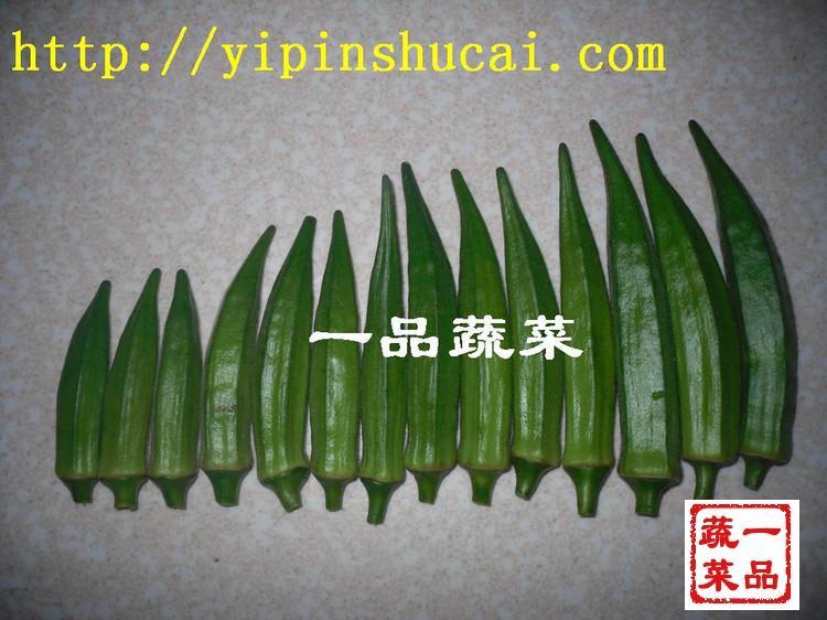 山东特菜黄秋葵