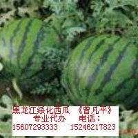 黑龙江绥化西瓜
