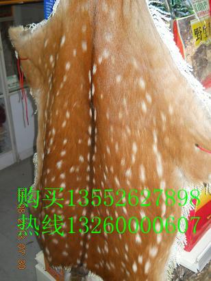 鹿皮北京哪里卖鹿皮