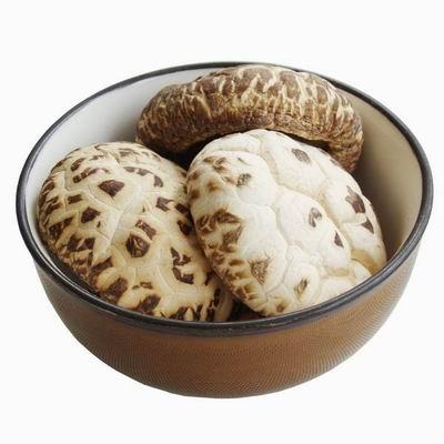 野生花菇 天然食用菌