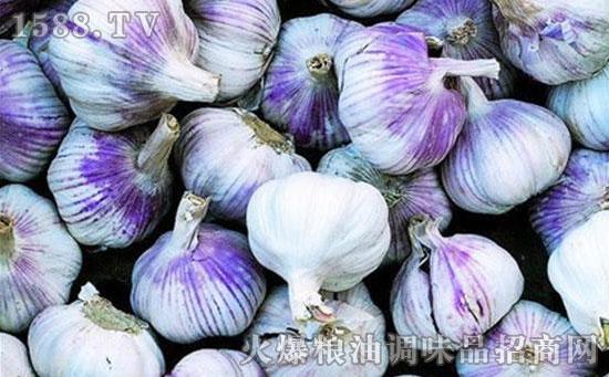 西八里紫皮大蒜