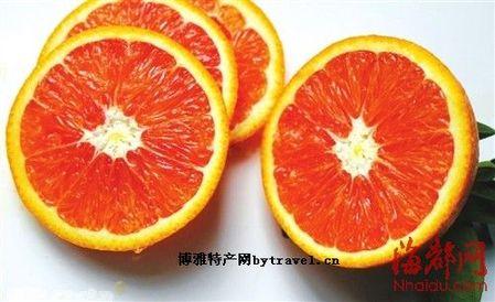 大南坂红肉橙