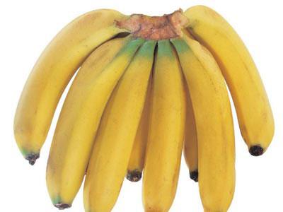 香蕉剖面结构图