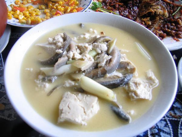 井冈山泥鳅钻豆腐