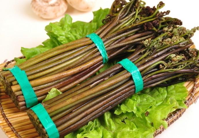 镜泊湖山蕨菜
