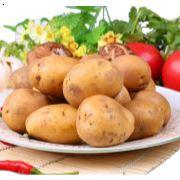 沙河站无公害土豆