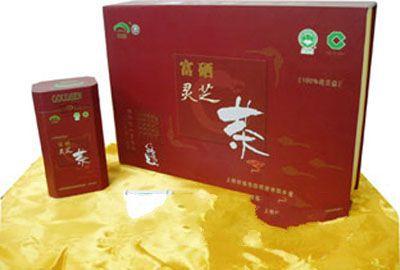 神农灵芝茶