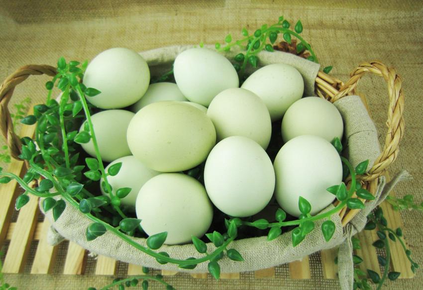 芷江绿壳鸡蛋