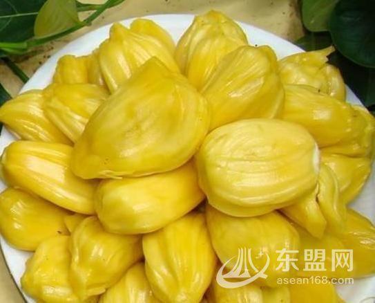 东海岛菠萝蜜