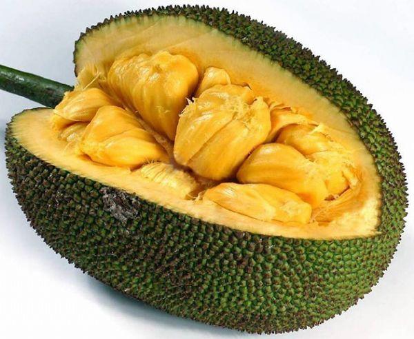 阳东菠萝蜜