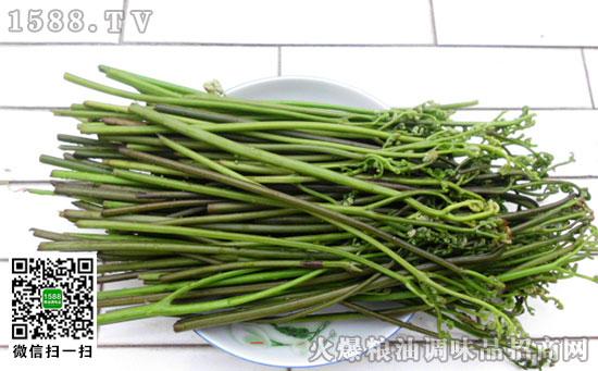 富川野蕨菜