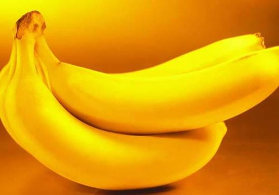 &nbsp&nbsp&nbsp&nbsp&nbsp&nbsp&nbsp&nbsp  澄迈美亭乡土地肥沃,水源充足,以盛产香蕉驰名,是澄迈县最大的香蕉生产基地,年总产量达17500多吨,其中90%外销于上海、南京、武汉、杭州等地。 &nbsp  香蕉是海南的主要水果之一,海南岛亦为原产地之一。主要分于陵水、三亚、乐东、文昌、琼海、万宁、澄迈、临高等。著名的品种有高把蕉、矮把蕉、油蕉、西贡蕉、粉蕉、芽蕉、蛋蕉等。华南热作两院成功培植的红香蕉,则是热带水果稀有品种,外观好,品位优。 &nbsp  澄迈美亭乡土地