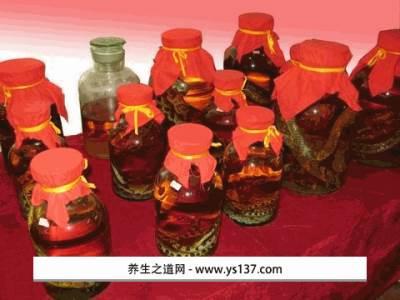 彭水五步蛇酒