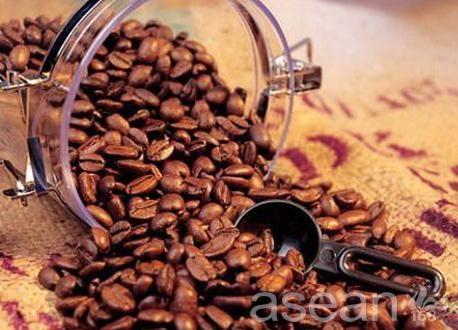 德宏小粒咖啡