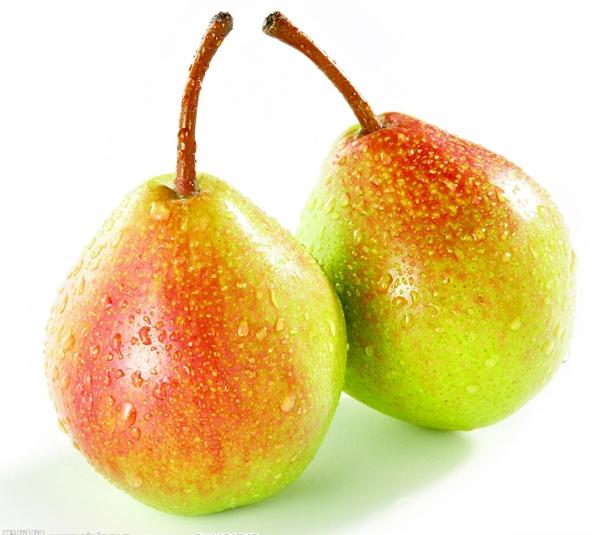 贵德软儿梨