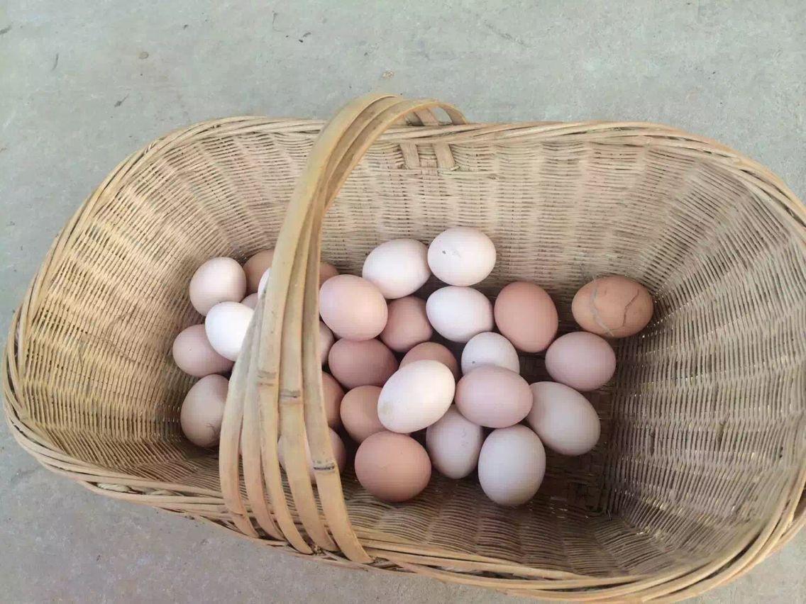 皖太农业 农家竹林散养新鲜土鸡蛋纯天然放养农村自养柴笨草野山鸡蛋30枚