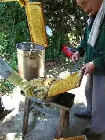 天然蜂蜜(未加工)